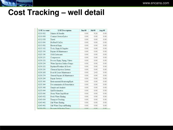 Cost Tracking – well detail