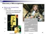 discovery of microorganisms