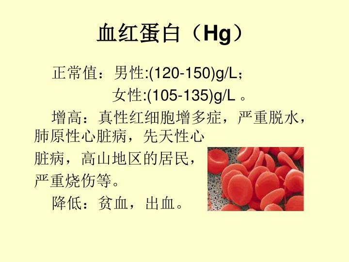 血红蛋白(