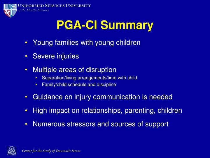 PGA-CI Summary