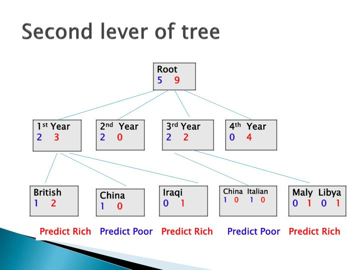 Second lever of tree