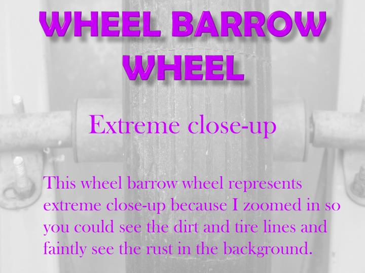 Wheel Barrow wheel