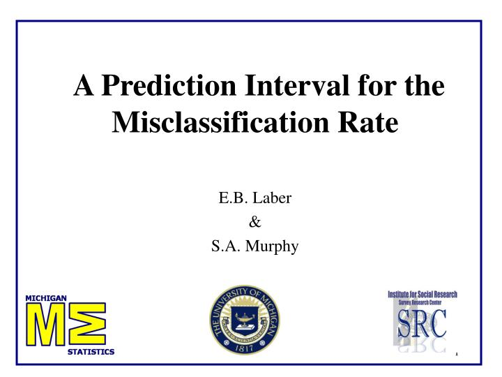 A prediction interval for the misclassification rate