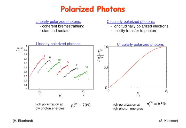 Polarized Photons