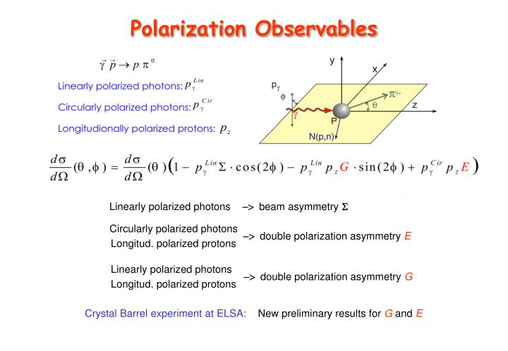 Polarization Observables