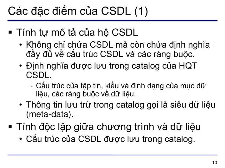 Các đặc điểm của CSDL (1)