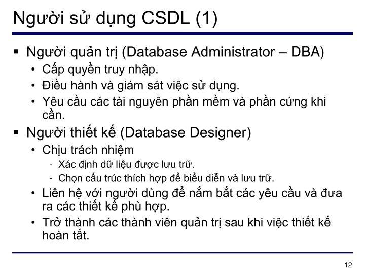 Người sử dụng CSDL (1)