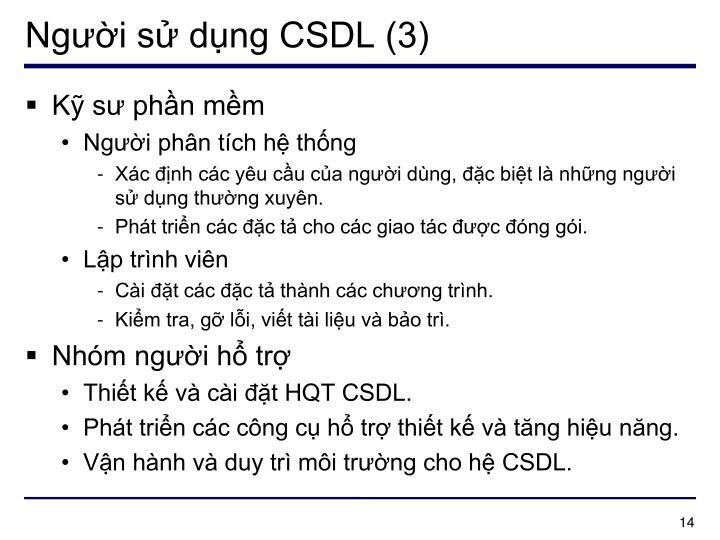 Người sử dụng CSDL (3)