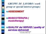 gruppi di lavoro work group or special interest groups
