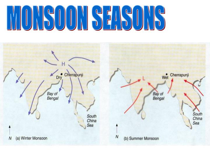 MONSOON SEASONS