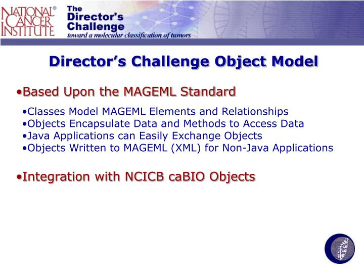 Director's Challenge Object Model