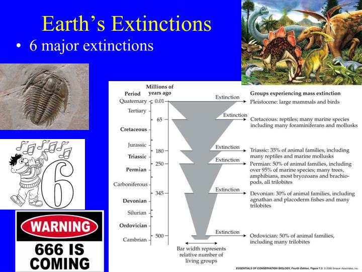 Earth's Extinctions