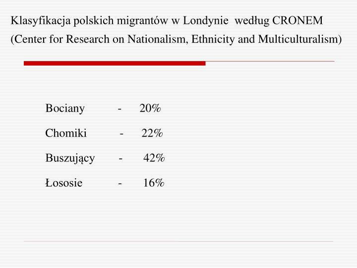 Klasyfikacja polskich migrantów w Londynie  według CRONEM