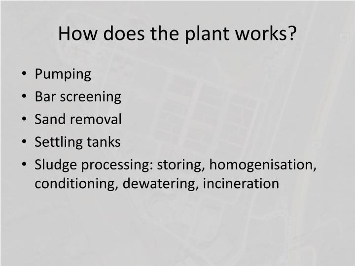 How does the plant works?