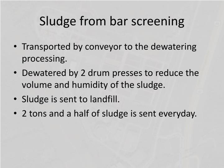 Sludge from bar screening