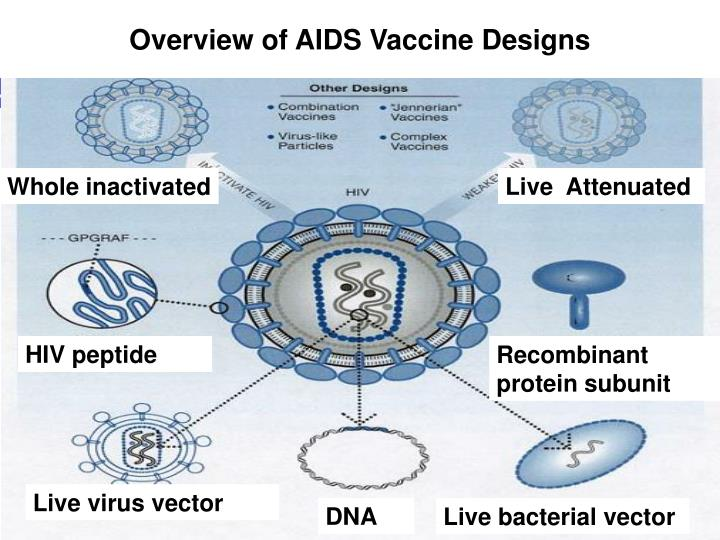 Overview of AIDS Vaccine Designs