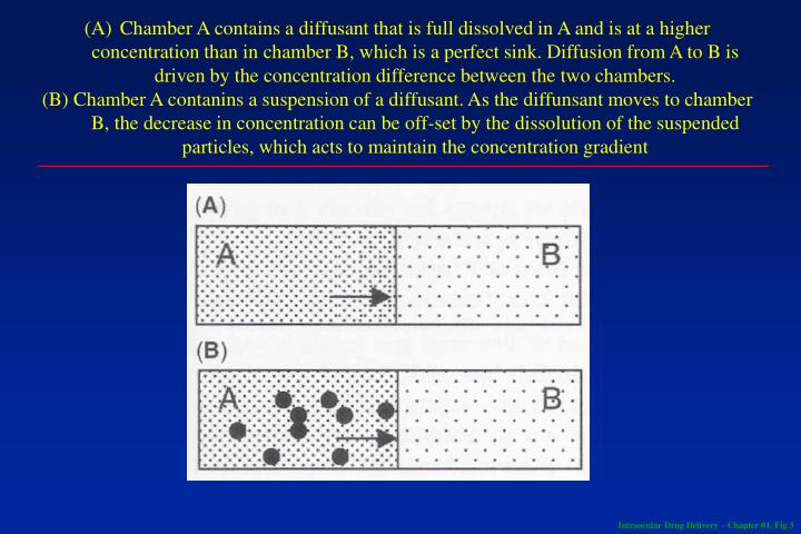 Chamber A contains a diffusant that is full dissolved in A and is at a higher concentration than in chamber B, which is a perfect sink. Diffusion from A to B is driven by the concentration difference between the two chambers.
