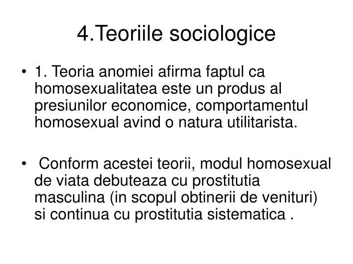4.Teoriile sociologice