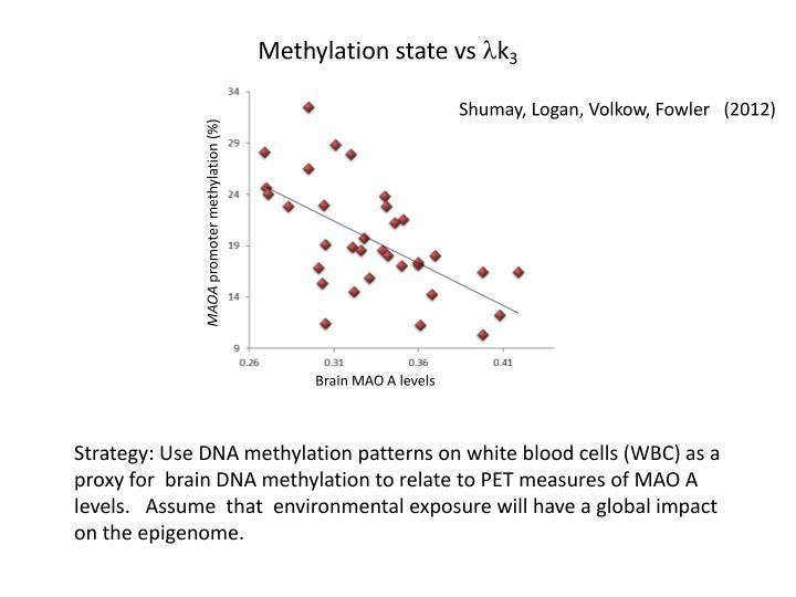 Methylation state vs