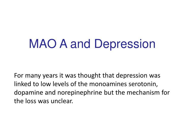 MAO A and Depression
