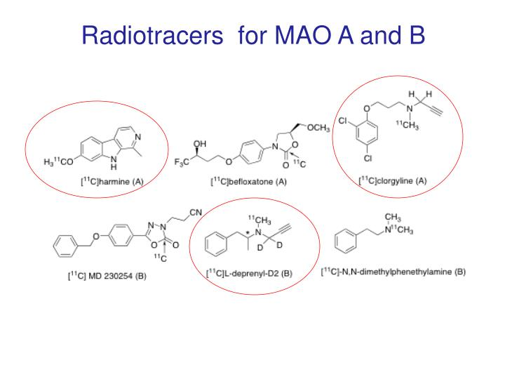 Radiotracers  for MAO A and B
