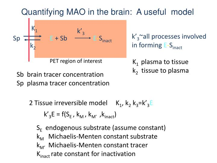 Quantifying MAO in the brain:  A useful