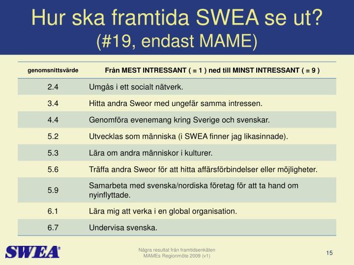 Hur ska framtida SWEA se ut?