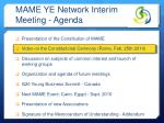 mame ye network interim meeting agenda