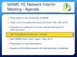 mame ye network interim meeting agenda2