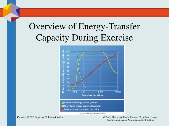 Overview of Energy-Transfer Capacity During Exercise