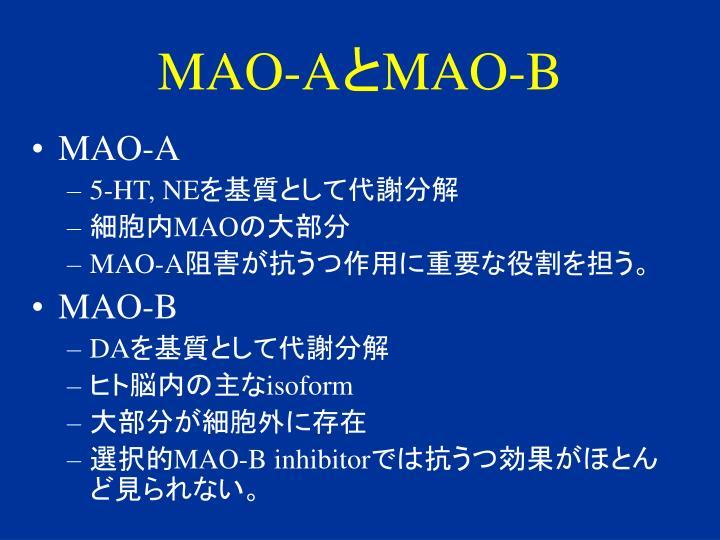 MAO-A