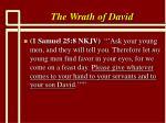 the wrath of david1