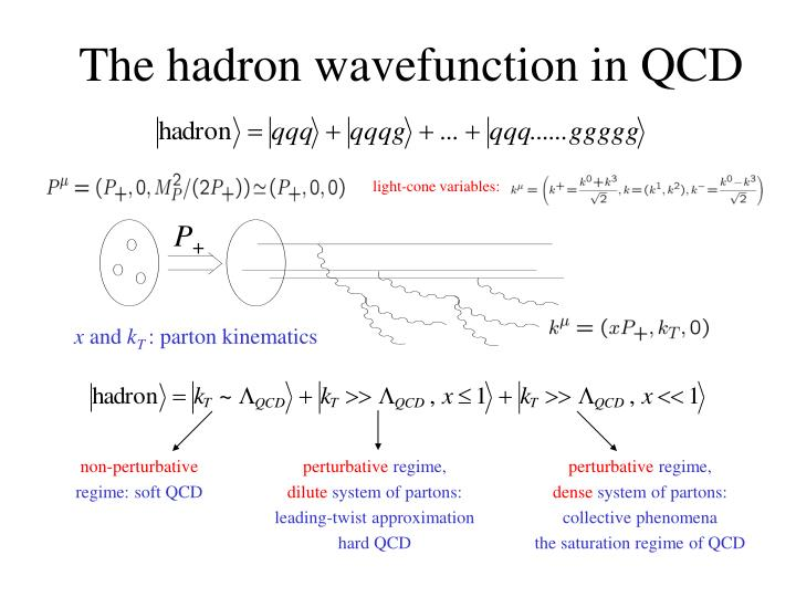 The hadron wavefunction in QCD