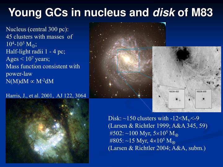 Young GCs in nucleus and