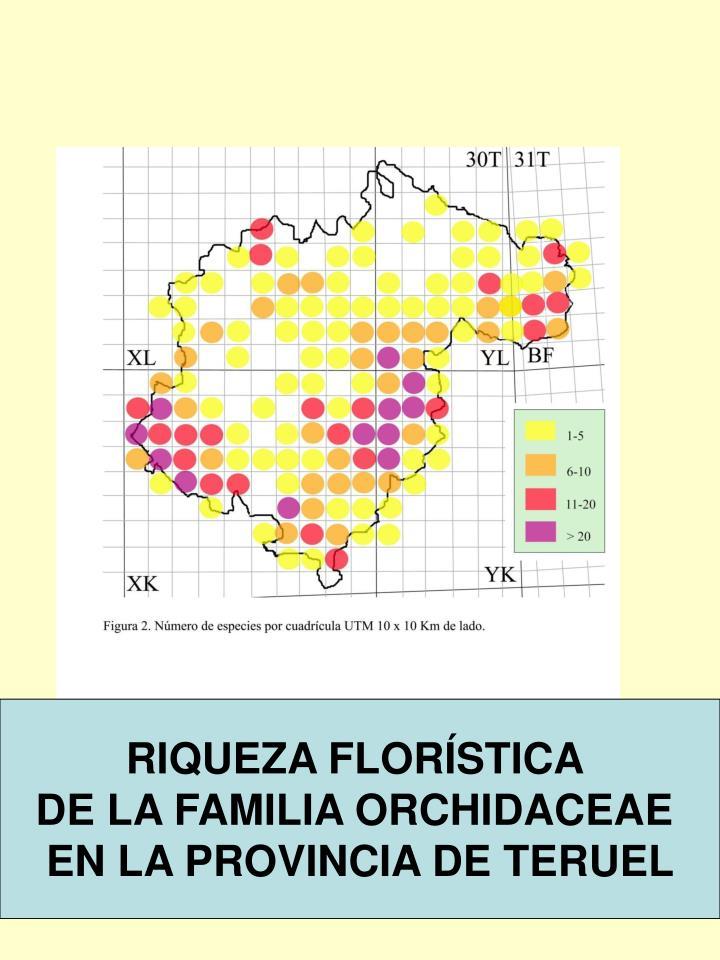 RIQUEZA FLORÍSTICA