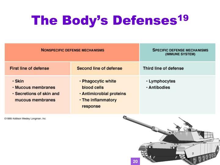 The Body's Defenses
