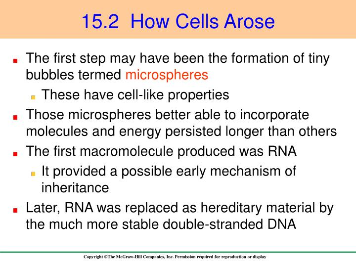 15.2  How Cells Arose