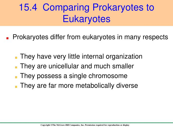 Prokaryotes differ from eukaryotes in many respects