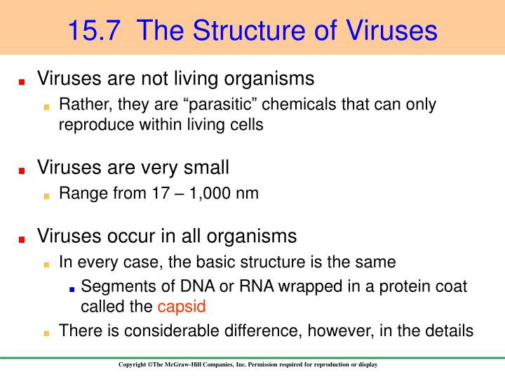 15.7  The Structure of Viruses