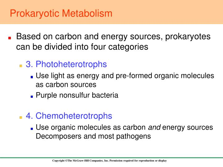 Prokaryotic Metabolism