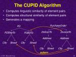 the cupid algorithm