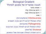 biological gradient