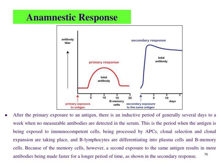 Anamnestic Response