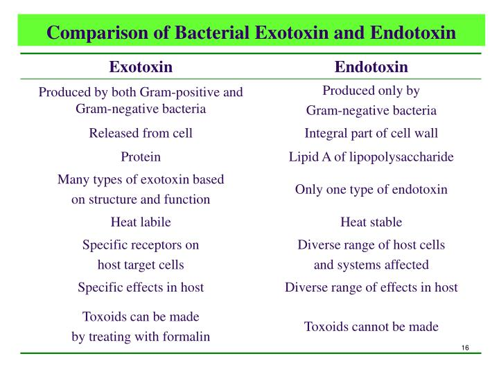 Comparison of Bacterial Exotoxin and Endotoxin