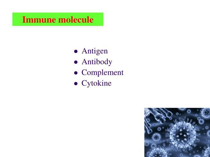 Immune molecule