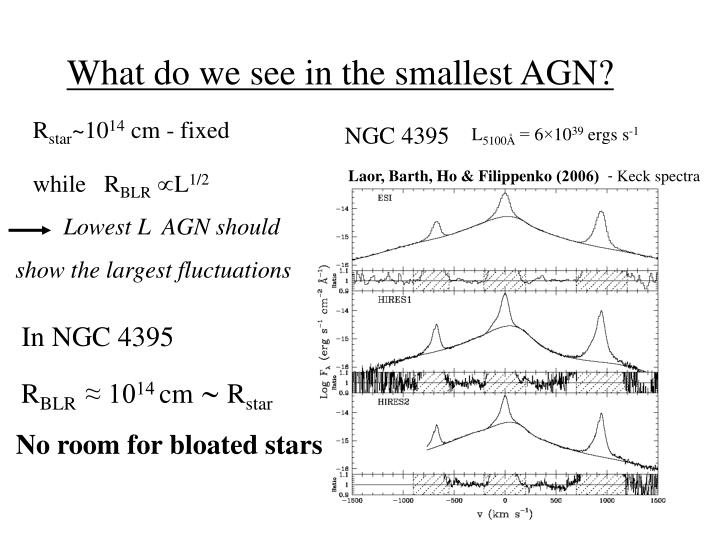 What do we see in the smallest AGN?