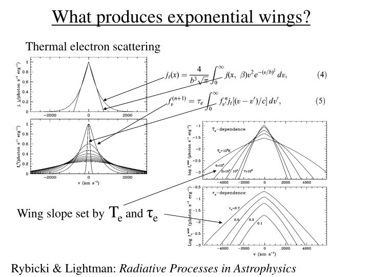 What produces exponential wings?