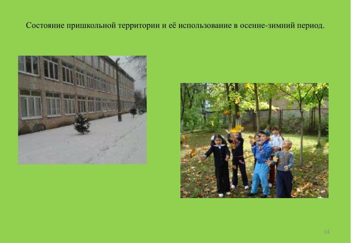Состояние пришкольной территории и её использование в осенне-зимний период.