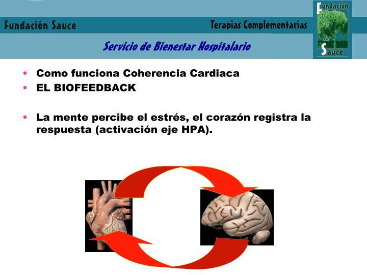 Como funciona Coherencia Cardiaca