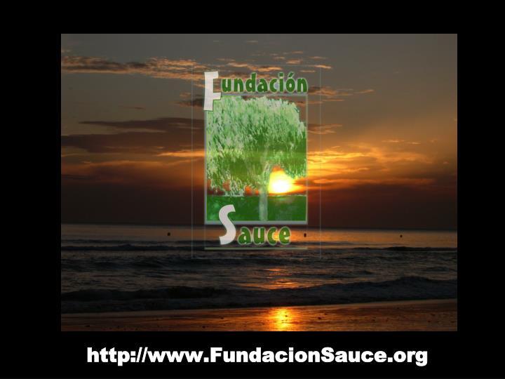 http://www.FundacionSauce.org